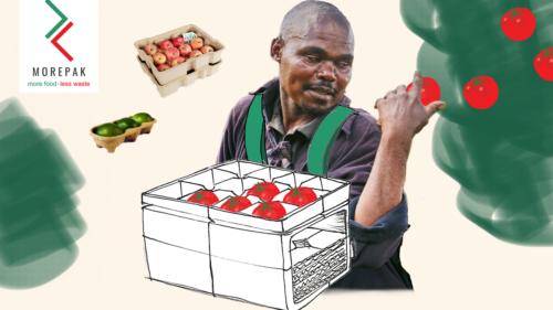 A graphic of a man with the MorePak packaging picking tomatoes